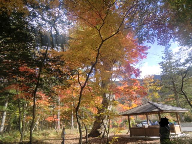 yunishigawa2.jpg